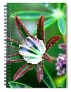 Starry Droplets Spiral Notebook