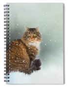 Starting To Snow Again Spiral Notebook