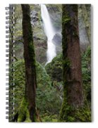 Starvation Creek Falls Between The Trees Spiral Notebook