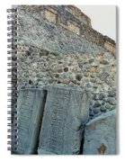 Statues Of Danzantes Spiral Notebook