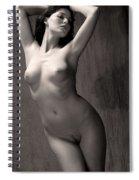 Statuesque #3 Spiral Notebook