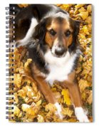 Stay Gold Spiral Notebook