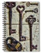 Steampunk - Old Skeleton Keys Spiral Notebook