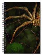 Steampunk - Spider - Arachnia Automata Spiral Notebook