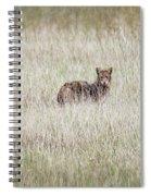 Steel Eyes Spiral Notebook