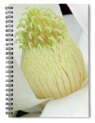 Steel Magnolia 41 Spiral Notebook