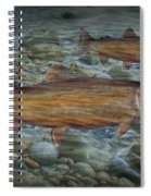 Steelhead Trout Fall Migration Spiral Notebook