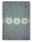 Steely Gray Bluer Version Spiral Notebook