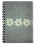 Steely Gray Rustic Flower Row Spiral Notebook