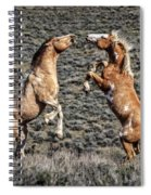 Steens Drama Spiral Notebook