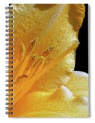 Stella D'oro - Day Lily Spiral Notebook
