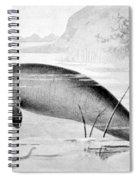 Stellers Sea Cow, Extinct Spiral Notebook