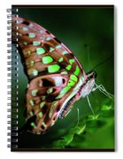 Step By Step Spiral Notebook