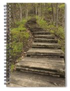 Step Trail In Woods 17 A Spiral Notebook