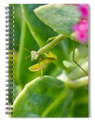 Stepping Out Spiral Notebook