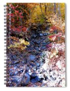 Stepping Stones At Autumn Forest Spiral Notebook