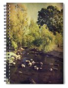 Stepping Stones To My Heart Spiral Notebook