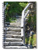 Stepping Up Spiral Notebook