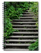 Steps With Ivy Spiral Notebook