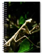 Stick Insect Spiral Notebook