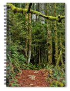 Sticking Out In The Rain Forest Spiral Notebook