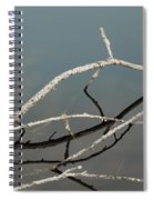 Sticks In The Water Spiral Notebook