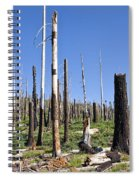 Sticks Spiral Notebook