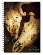 Still Death Spiral Notebook