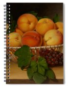Still Life - Basket Of Peaches Spiral Notebook