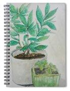 Still Life Plants Spiral Notebook