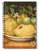Still Life With Bowl Of Citrons Spiral Notebook