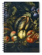 Still Life With Melons Apples Cherries Figs And Grapes On A Stone Ledge Spiral Notebook