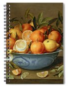 Still Life With Oranges And Lemons In A Wan-li Porcelain Dish  Spiral Notebook