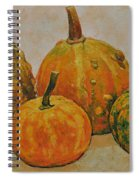 Still Life With Pumpkins Spiral Notebook