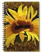 Still Life With Sunflower Spiral Notebook