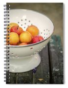 Still Life With Yellow Plums  Spiral Notebook