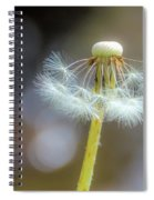Still Standing Tall Spiral Notebook