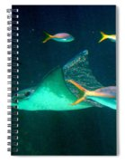 Sting Ray Spiral Notebook