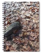 Stone And Leaves Spiral Notebook