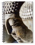 Stone Carved Buddha Faces Spiral Notebook