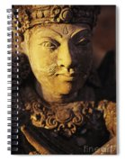 Stone Carving Spiral Notebook