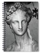 Stone Cold Beauty Spiral Notebook