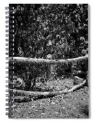 Stone Fence B Spiral Notebook