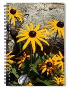 Stone Flowers Black Eyed Susan Spiral Notebook