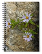 Stone Flowers Blue Spiral Notebook
