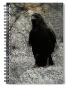 Stone Gray Spiral Notebook