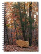 Stone Leaves And Trees Spiral Notebook