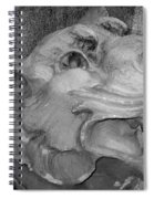 Stone Lion Spiral Notebook