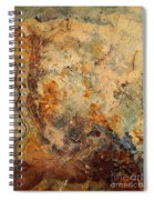 Stone Maps Spiral Notebook