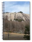 Stone Mountain Early Spring Spiral Notebook